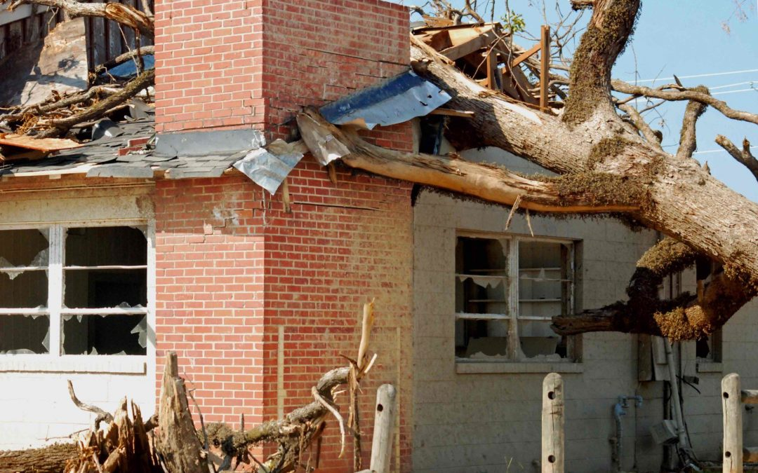 A Day in the Life of an Adjuster: What Really Happens After a Major Disaster?