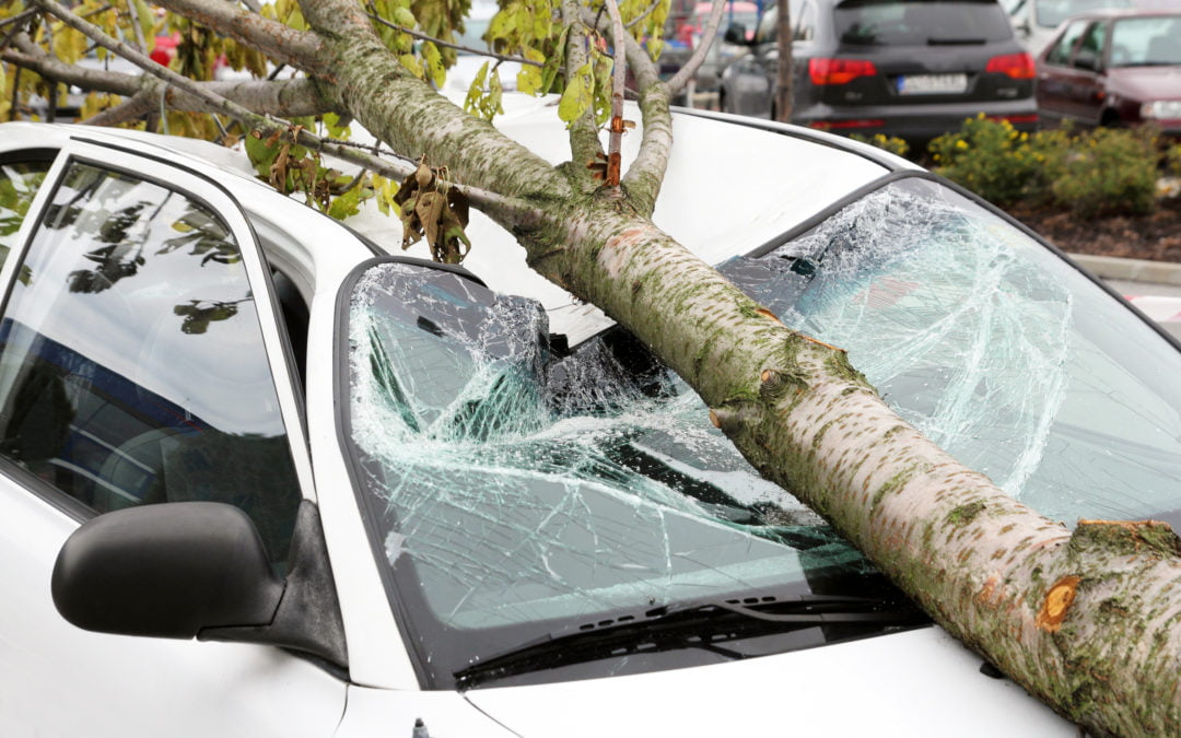 What Adjusters Must Know Before the 2020 Storm Season