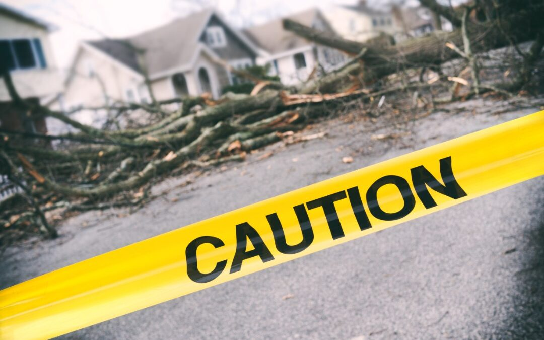 How to Become a Successful Catastrophe Adjuster